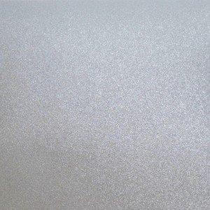 6006 Platinum Silver